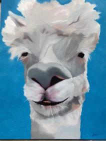 Alpaca Llama Sebastian